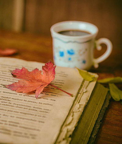 Open Book with Leaf on Page